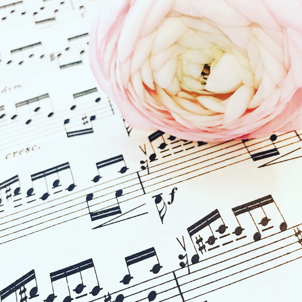 pastellfarbene Blüte auf Noten